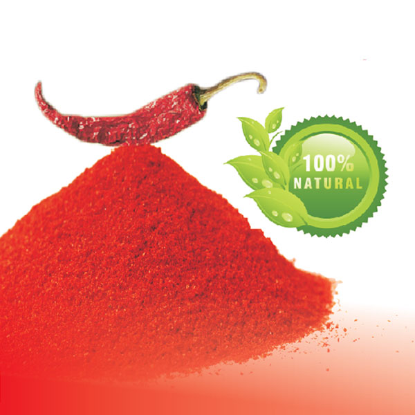 Kashmiri  Chilli Powder - 500gm